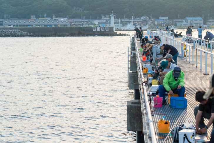 豊浜漁港釣り桟橋|釣り場の詳細情報、釣れる魚・施設案内【愛知県知多半島】