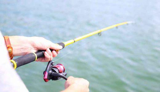 【2020年最新】サビキ釣り・ちょい投げ釣りに併用できるおすすめの竿5選